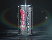 Budweiser: Into the Night