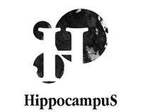 NeuroSketch & Hippocampus
