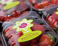 Boscosole - forest fruits