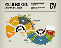 Paulo Estriga Infographic CV
