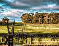 Yallingup - Western Australia