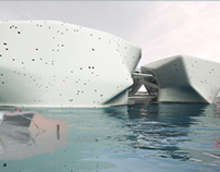 Thesis : the house of water for Abu Dhabi