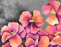La fragancia del color, más flores