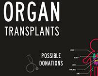 Organ Transplants Infographics