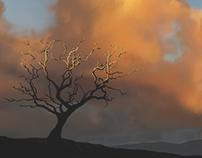 Sunrise Digital Painting