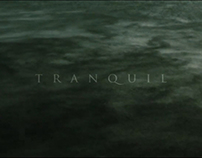 Tranquil | iPhone Video