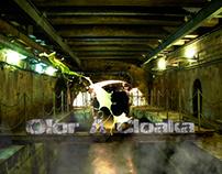 Diseño gráfico para Tumblr Olor a Cloaka