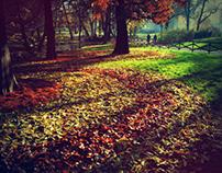 Foliage drops
