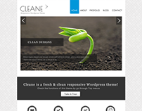 Cleane - Fresh Wordpress Theme