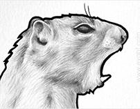 "Series ""polyglot animals"""