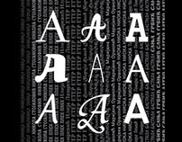 TIPOBERBA 2011, Cyrillic type design workshop