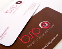 BSP, Business Strategic Partnership