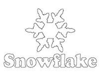 Snowflake shoes Logo