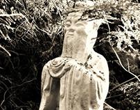 """""""Zen"""""""