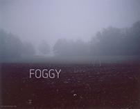 A foggy Polaroid morning