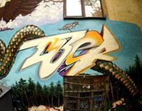 freestyle graffiti 2011-2012