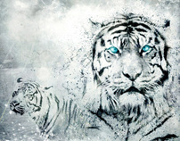 2010, Year of the Tiger