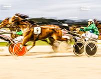 New Zealand Sport