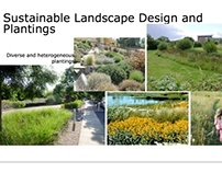 Sustainable Landscape Design and Plantings