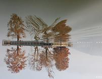 Abstract Kashmir- jheelon ka shehar