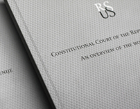 Overview of the work for the Constitutional Court