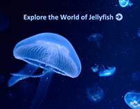 Aquarium Website