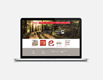 Flexi Website