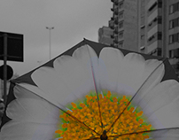 Umbrella in the city