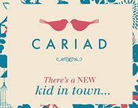 Cariad - Gift shop branding