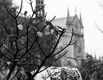 Places : Paris : Black and White