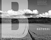 B Natural
