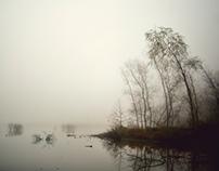 foglands