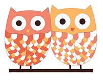 Older Wiser Life Services, LLC (OWLS)