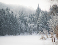 A Winter Daybreak