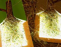 Photo frames Frame lamp