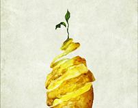 International Compost Awareness Week 2013