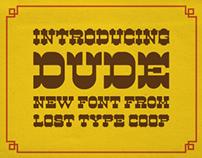 Dude! Lost Type Co-Op