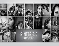 Síntesis 3 | Sección 3