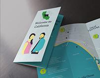 Destination Wedding Brochure