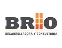 BRIO - Developer &  Consultant
