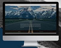 Zola Consulting Company Website