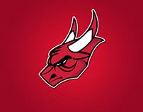 Chicago Bulls Rebrand Project (Concept)