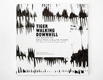 Tiger Walking Downhill