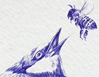 Hand drawing Bird