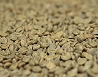 The Reference Guide to Coffee Roasting [Infographic]