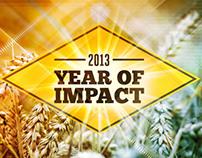 2013: Year of Impact