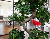 dieTaikonauten office - interior design