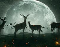 Moon vs Fire