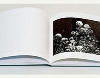 The Palm Jumeirah - Coffeetable Book