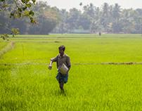 Rural Kerala